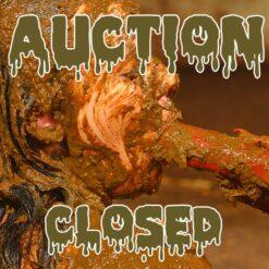 Auktion Beendet